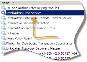 IntelliAdmin Cron Service