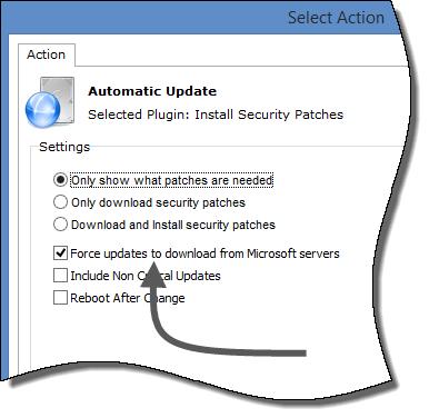 AU MS Download option