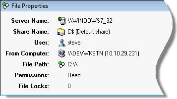 Share Monitor File Folder Properties