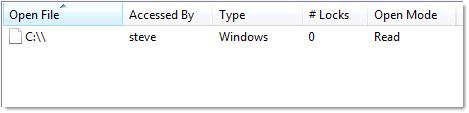 Windows Share Monitor